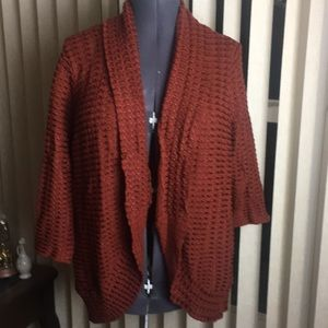 Dress Barn sweater with 3/4 sleeves.  2X
